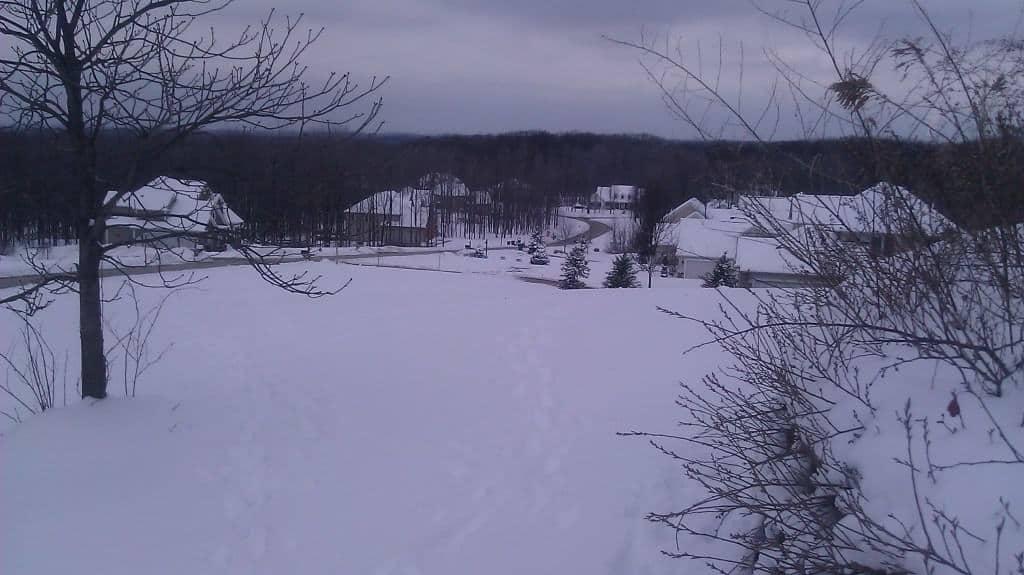 Concord Landscape 1