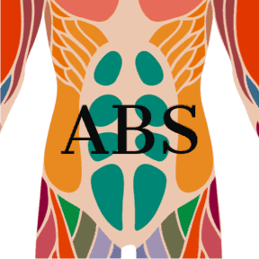 Video of Abs Exercises
