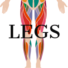 Video of Legs Exercises