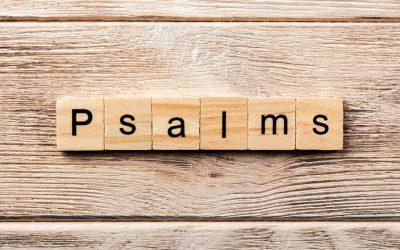 Summer Psalm